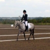 Area Dressage Qualifier - Bold Heath 2017