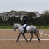 winter-dressage-17thNov19-9