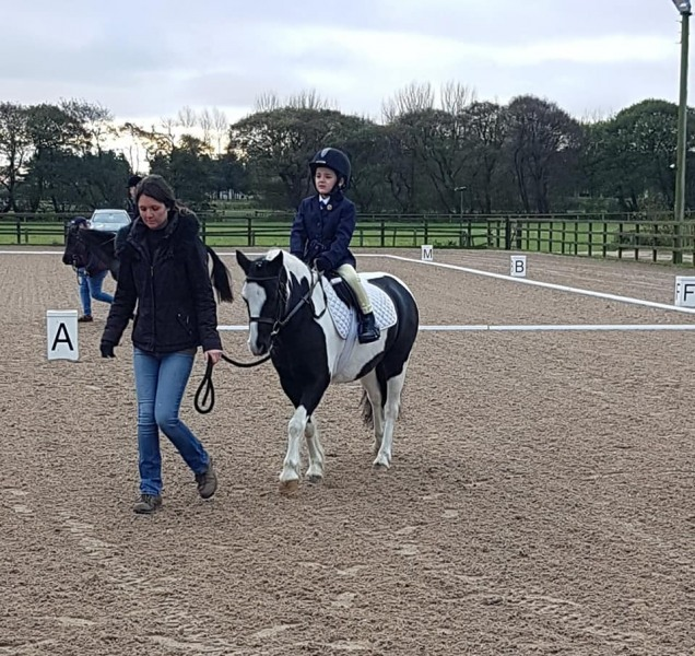 winter-dressage-17thNov19-2
