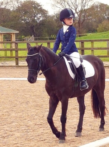 winter-dressage-17thNov19-7