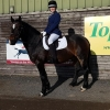 winter-dressage-20thOct19-14