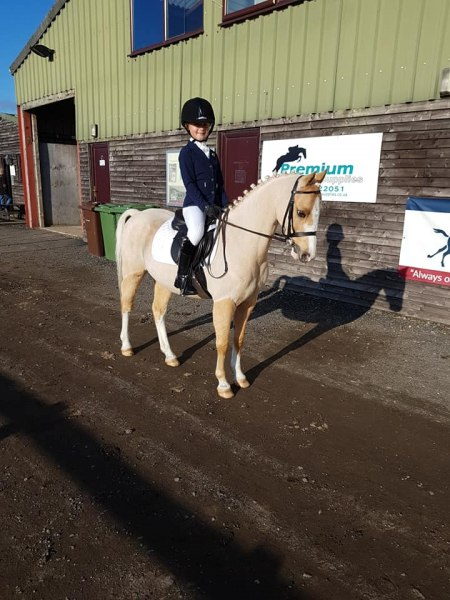 winter-dressage-20thOct19-1