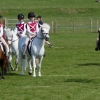 Prince Philips Mounted Games Area 4 Competition