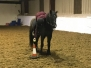 Mounted Games Lesson 25th October 2019